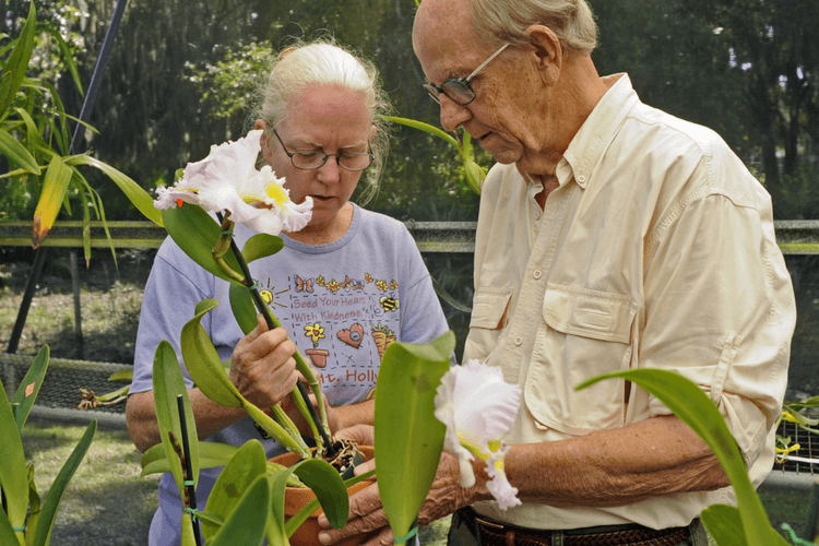 5-benefits-of-hobbies-to-senior-citizen